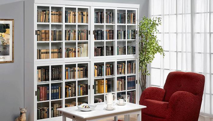 Шкаф для книг в гостиную