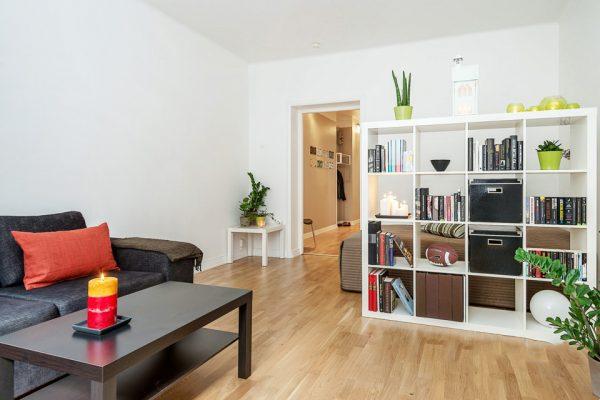 Разделение гостиной-спальни высоким стеллажом