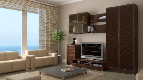 Раздвижные дверки в мебели для гостиной